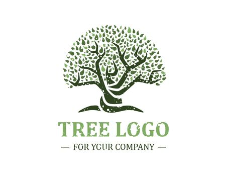 Tree logo isolated on a white background. Classic design. Green and brown colors. Lettering. Space for text. Leaves and roots. Simple modern concept. Circle form. Flat style vector illustration. Foto de archivo - 142990932