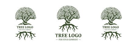 Tree logo isolated on a white background. Classic design. Green and brown colors. Lettering. Space for text. Leaves and roots. Simple modern concept. Circle form. Flat style vector illustration.