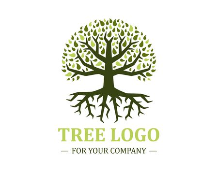 Circle tree logo isolated on a white background. Classic design. Green and brown colors. Lettering. Space for text. Leaves and roots. Simple modern concept. Flat style vector illustration. Foto de archivo - 142990941