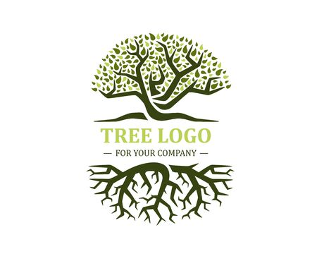 Circle tree logo isolated on a white background. Classic design. Green and brown colors. Lettering. Space for text. Leaves and roots. Simple modern concept. Flat style vector illustration.