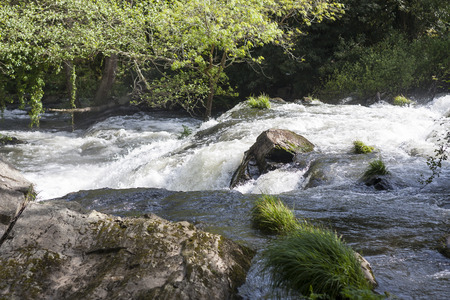 Mountain river in the nord of Spain.