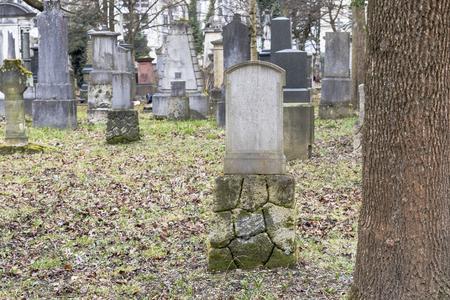 memorial cross: Tombstones in a cemetery nature park outdoors Foto de archivo