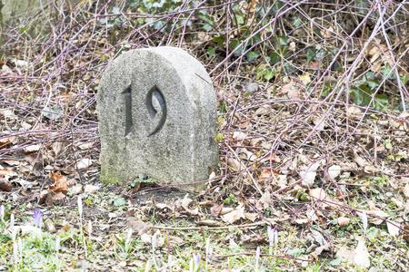 memorial cross: L�pidas en un cementerio parque natural al aire libre Foto de archivo