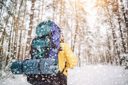 Single Tourist Walking Away Through Snowfall in Forest