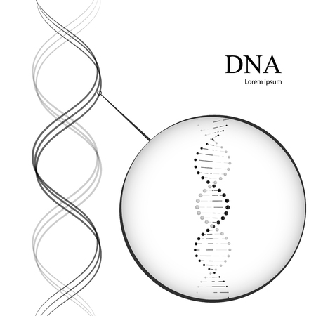 DNA molecules. Vector illustration isolated on white background