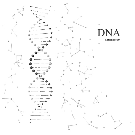human evolution: DNA molecules. Vector illustration isolated on white background