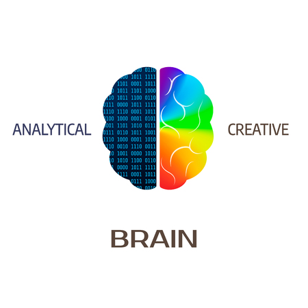 Brain icon. Left brain part - analytical. Right hemisphere of brain - creative. Vector illustration