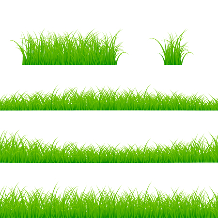 Grass borders set grass plant panorama vector illustration isolated on white background.