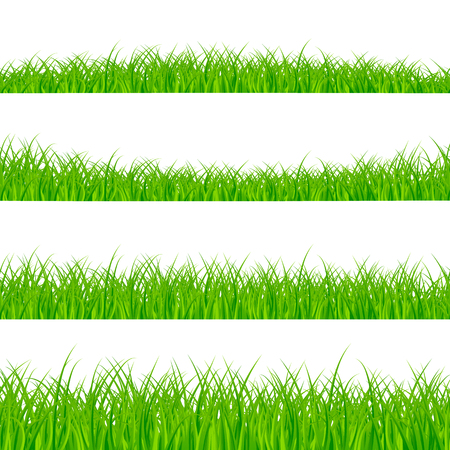 Grass Borders Set. Grass Plant Panorama. Grass border or frame. Vector illustration isolated on white background