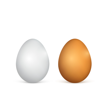 White and brown eggs realistic 3d chicken eggs vector illustration isolated on white background.