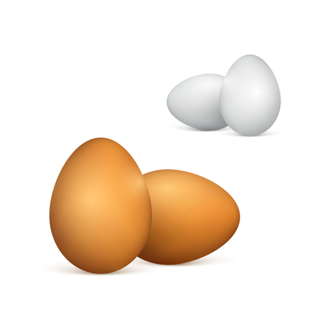 Set of white and brown eggs. Realistic 3d chicken eggs. Vector illustration isolated on white background