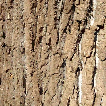 Bark pattern background. Relief texture of an old oak bark. Vector illustration