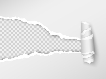 Torn paper. Realistic hole in the sheet of paper on a transparent background. Vector illustration