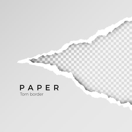 Papel abierto rasgado gris con fondo transparente. Hoja de papel rasgada. Textura de papel. Ilustración vectorial