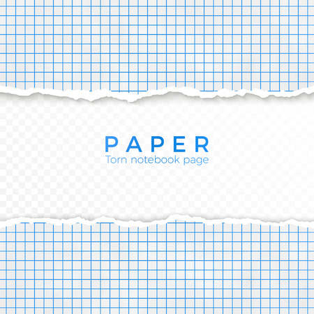 Torn Edge of Blue Squared Paper. Torn Piece of Squared Paper from Notebook. Blank Page Isolated on Transparent Background. Vector illustration