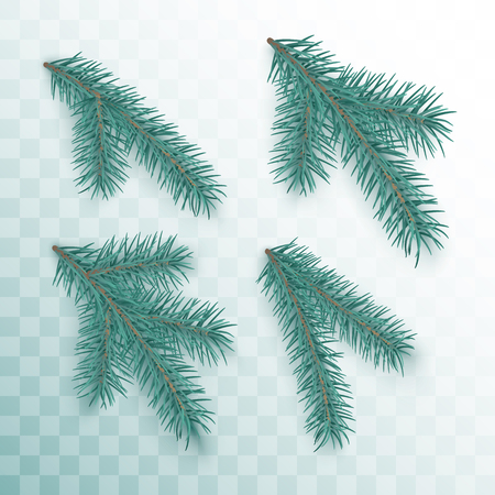 Conifer branches set. Green branches of a Christmas tree isolated on transparent background. Holiday decor element. Vector illustration  イラスト・ベクター素材