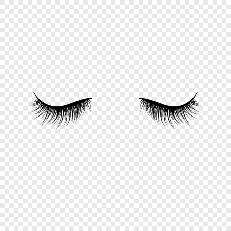 Black eyelashes. False eyelashes. Vector illustration  isolated on transparent background