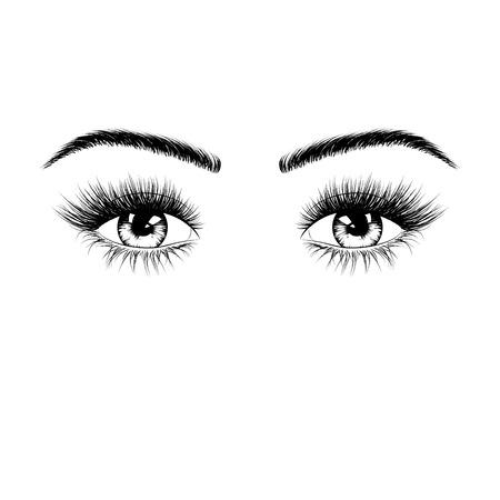 Hand drawn female eyes silhouette. Eyes with eyelashes and eyebrows. Vector illustration isolated on white background Ilustrace