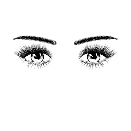 Hand drawn female eyes silhouette with eyelashes and eyebrows. Vector illustration isolated on white background