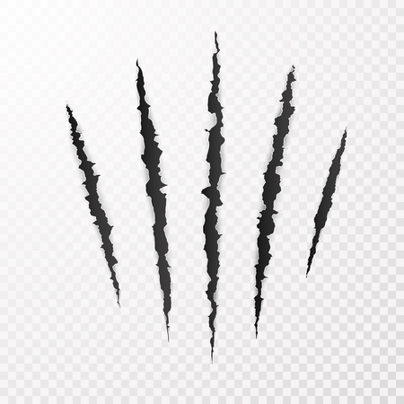 Monster Claws. Claw scratch mark. Animal scratch isolated on transparent background. Shred paper. Vector illustration