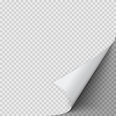 Curled corner of paper. Empty sheet of paper with twisted corner. Vector illustration 일러스트