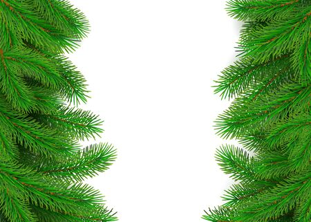 Green fir branches border. Christmas tree twig decoration element for banner and poster. New Year tree branches with bushy needles. Conifer holiday decor. Vector