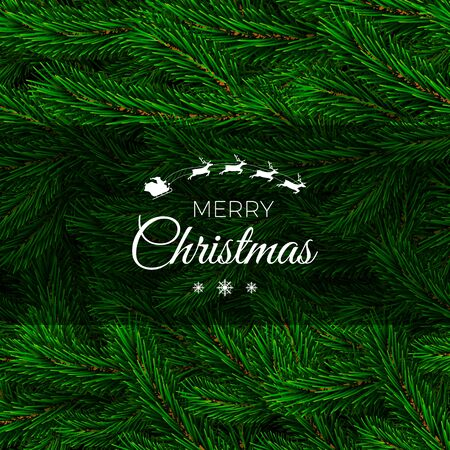 Fir branch backdrop design. Christmas decoration element. Green colorful pine pattern. New Year tree branches background. Vector