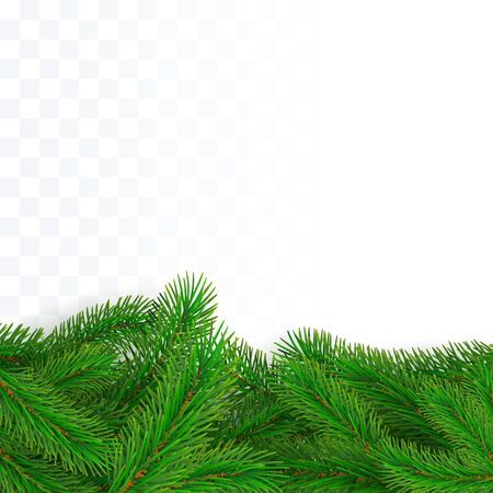 Green fir branches border. Christmas tree twig decoration element for banner and poster. Conifer holiday decor. Vector