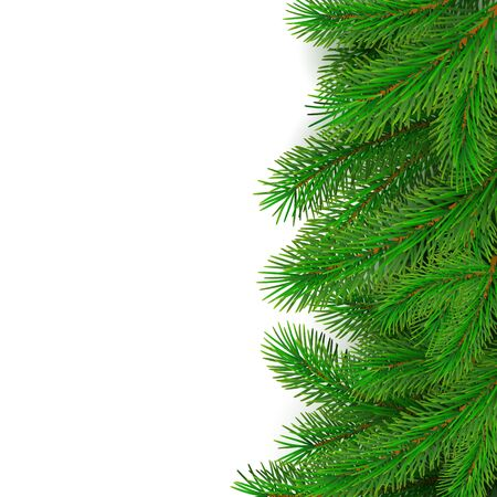 Fir tree border background. Christmas tree brancher. Realistic New Year seasonal decorations. Vector illustration isolated on white background