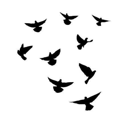 Doves are flying. Silhouette of pigeons that fly on a white background. Vector illustration Vettoriali