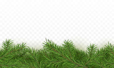 Fir tree realistic border background. Christmas tree brancher texture. Winter seasonal decorations with space for text. Vector illustration isolated on transparent background
