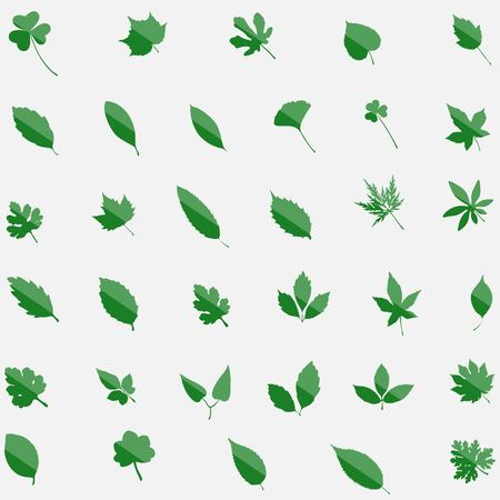 vegetate: leaves set, green, silhouette eco leav isolated on white bachground, editable elements, stock vector illustration