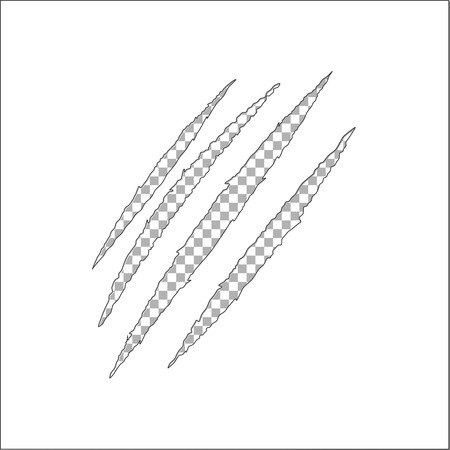 Claw scratch vector, animal claw scratch Stock fotó - 82258267
