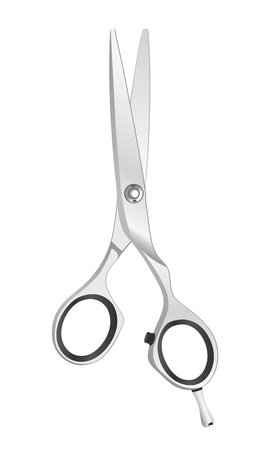 scissors hair: Steel Scissors on white background