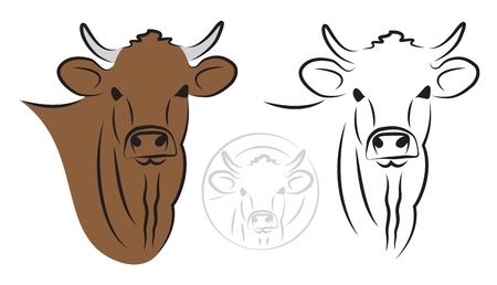 bull head: Cow set on white background