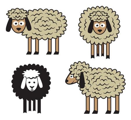 Sheep set on white background  Vector illustration  Vector