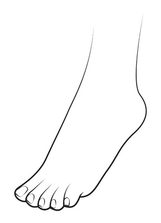 Human foot on white background Vector