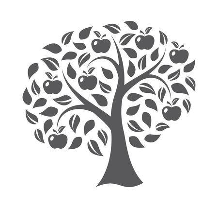 arbol de manzanas: Manzano en el fondo blanco Vectores