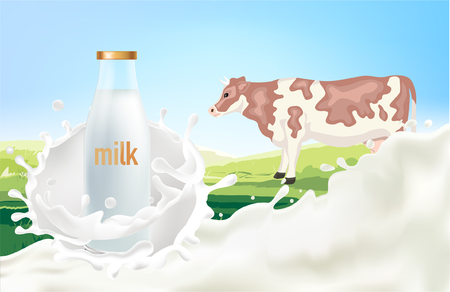 Cow with milk splash