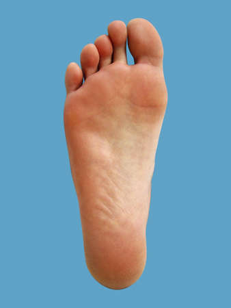 Foot Stock Photo - 3192743