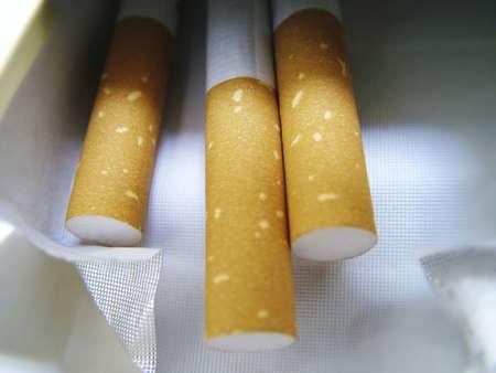 hazardous waste: Cigarettes