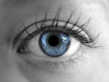 Blue eye Stock Photo - 3192801
