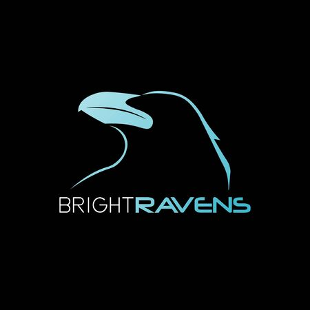 Bright Raven abstract mark logo 02