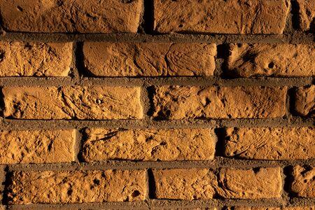 Shady brick wall in sunlight Reklamní fotografie