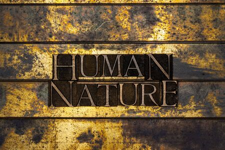 Photo of real authentic typeset letters forming Human Nature text on vintage textured silver grunge copper and gold background