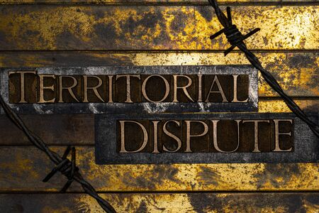 Territorial Dispute text formed with real authentic typeset letters on vintage textured silver grunge copper and gold background