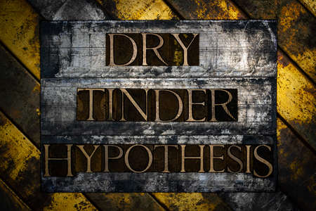 Dry Tinder Hypothesis text formed with real authentic typeset letters on vintage textured silver grunge copper and gold background