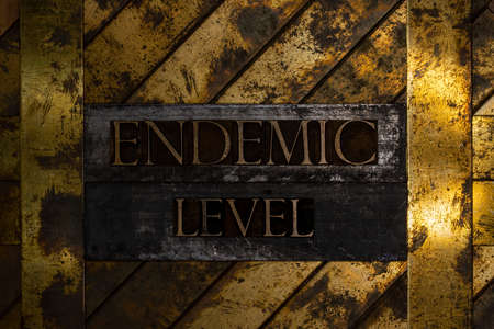Endemic Level text message on textured grunge copper and vintage gold background Stock fotó