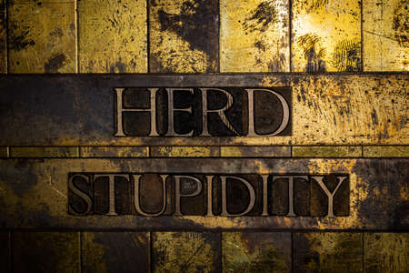 Herd Stupidity text on grunge textured copper and gold background