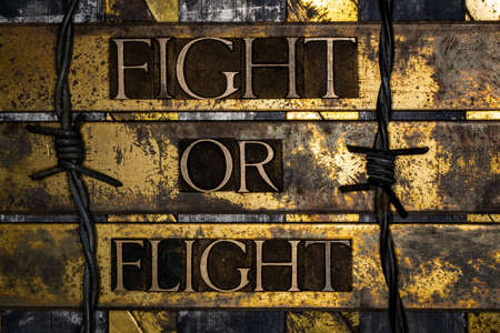 Fight or Flight text with barbed wire on vintage textured grunge copper and gold background Stockfoto